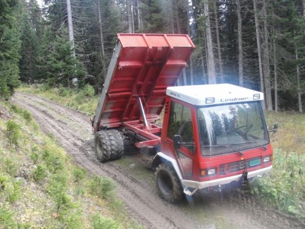 Transporter mit Dreiseitenkipper